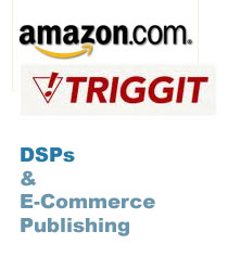 Amazon.com and Triggit