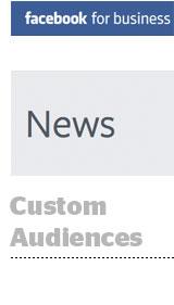 cusotm-audiences