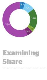 examining-share