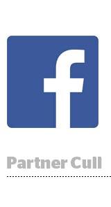 fb-partner-mobile-measurement