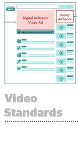video-standards