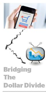 BridgeDollar