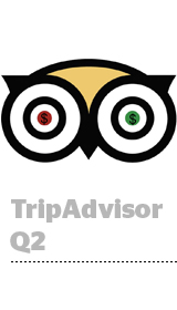 TripAdvisorearnings