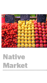 Native Market