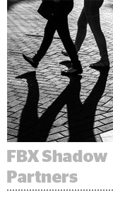 FBX-shadow