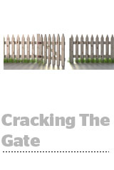 crackingthegate