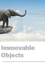 immovableobjects