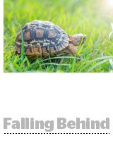 fallingbehind