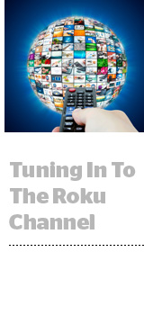 Roku's Platform Business Grew 96% In Q2 | AdExchanger