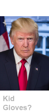 Donald Trump headshot