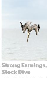 Trade Desk q1 earnings